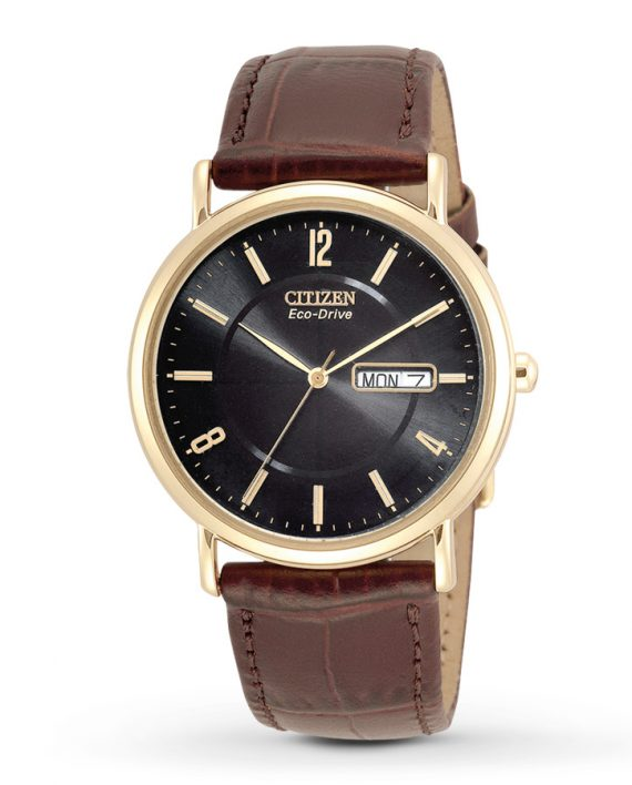 Citizen Men's Eco-Drive Watch -0